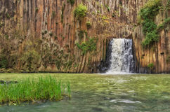 Basaltachtige Prisma's van Santa Maria Regla mexico stock foto