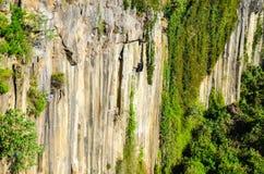 Basaltachtige Prisma'scanion van Santa Maria Regla, Huasca DE Ocampo, Mexico 16 mei Stock Afbeeldingen