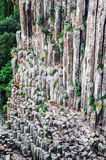 Basaltic Prisms Canyon of Santa Maria Regla, Huasca de Ocampo, Mexico. May 16th. Rock formations carved by water with a perfect geometric structure having a stock images