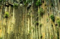 Basaltic Prisms of Santa Maria Regla. Mexico. Basaltic Prisms of Santa Maria Regla. Tall columns of basalt rock in canyon, Huasca de Ocampo, Mexico stock images