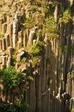 Basaltic Prisms of Santa Maria Regla. Mexico. Basaltic Prisms of Santa Maria Regla. Tall columns of basalt rock in canyon, Huasca de Ocampo, Mexico stock photos
