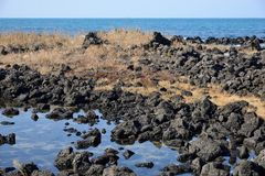 Basaltic Sea side in Island Royalty Free Stock Photos