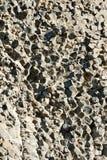 Basaltkolonn Arkivfoton