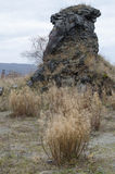 Basaltkolonnlandskap IX Royaltyfri Bild