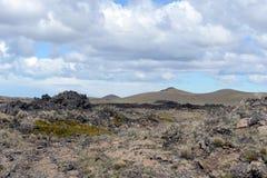 Basaltlava in het nationale Park Pali Aike stock fotografie