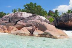 Basaltonderwijs op overzeese kust Baie Lazare, Mahe, Seychellen Royalty-vrije Stock Foto's