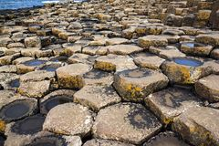 Basaltrots op de Ierse kust in detail royalty-vrije stock afbeelding