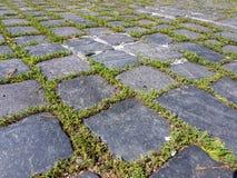 Basaltstein blockiert Pflasterungsschritte mit grünem Mooshintergrund Stockbilder