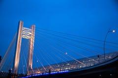 Basarab Bridge Royalty Free Stock Image