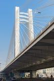 Basarabviaduct in Boekarest, Roemenië in daglicht Stock Foto's