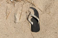 Bascule électronique se trouvant sur la plage images libres de droits