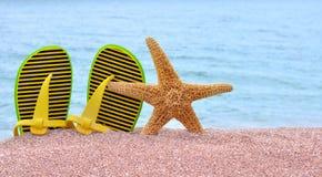 Bascules électroniques colorées et étoiles de mer Image stock