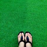 Bascules électroniques noires sur l'herbe artificielle luxuriante verte, l'été et le concept de vacances Image stock