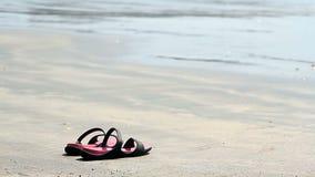 Bascules électroniques sur une plage sablonneuse banque de vidéos