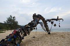 Bascules sur l'arbre sur l'île au Cambodge images libres de droits