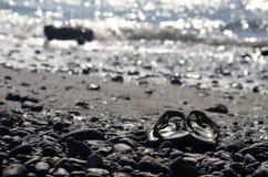 Bascules sur la plage Images stock