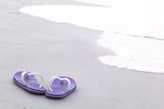 Bascules violettes sur la plage Photographie stock libre de droits