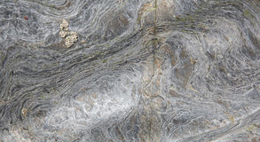 Basculez la texture de fond avec le remous et le modèle naturel Image libre de droits