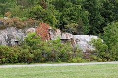 Basculez le mur avec des arbres et des arbustes le long des mille îles Parkwa Photographie stock