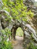 Basculez le tunnel sur le chemin de hausse en parc national Cheile Nerei Roumanie Image libre de droits