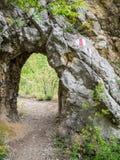 Basculez le tunnel sur le chemin de hausse en parc national Cheile Nerei Roumanie Image stock