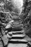 Basculez les escaliers sur le chemin de parc d'état, en noir et blanc Images libres de droits