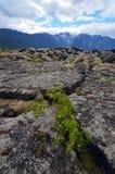 Basculez les fissures dans le ` de Nisga Lava Bed commémoratif, Colombie-Britannique, Canada photographie stock