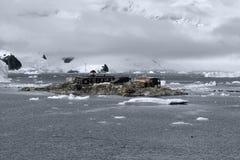 Base antártica chilena Gonzalez Videla de la investigación Situado en la península antártica en la bahía del paraíso, la Antártid Fotos de archivo