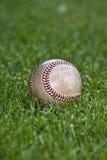 Base-ball dans l'herbe de terrain extérieur Image stock