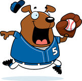 Base-ball de chien de bande dessinée Photographie stock