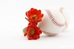 Base-ball de ligue de cactus avec des fleurs de désert Photo stock