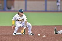 2015 base-ball de NCAA - WVU-TCU Image libre de droits