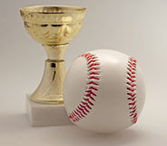 Base-ball et cuvette Images stock