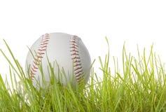 Base ball in Grass Royalty Free Stock Photos