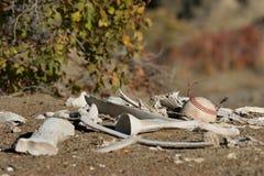 Base-ball ridiculement détruit Photo libre de droits