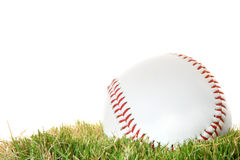 Base-ball sur l'herbe Photos stock