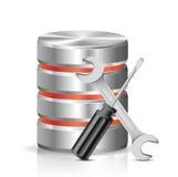 Base di dati con gli strumenti di riparazione Fotografia Stock