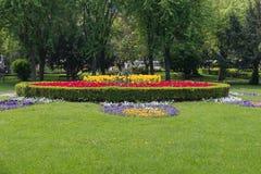 Base di fiore in un giardino convenzionale Immagine Stock