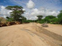 Base di fiume asciutta Immagini Stock Libere da Diritti
