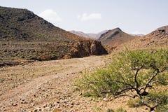 Base di fiume asciutta in montagne Immagini Stock Libere da Diritti