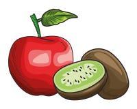 Base Fresh fruit nutrition healthy hand drawn. Fresh fruit nutrition healthy grouped apple and kiwi fitness diet options vector illustration graphic design stock illustration
