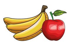 Base Fresh fruit nutrition healthy hand drawn. Fresh fruit nutrition healthy grouped bananas and apple fitness diet options vector illustration graphic design vector illustration