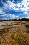 Base variopinta delle sorgenti calde del Yellowstone immagine stock