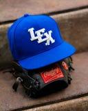 Baseball är tillbaka! Fotografering för Bildbyråer