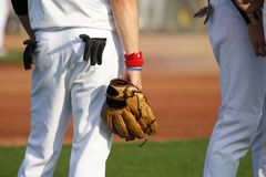 Baseball. Player with  glove on The sport field Stock Image