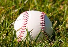 Baseball. Image of a baseball on grass Stock Image