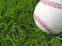 Baseball. In long grass Stock Image