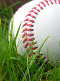 Baseball. High contrast baseball in long grass Stock Photos