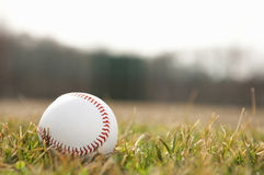 Baseball Stock Images