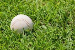 Baseball auf dem frischen grünen Gras Stockfoto